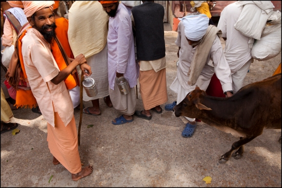 Sadhus in line waiting to get free food in an Ashram of Rishikesh.