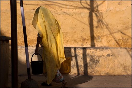 Water. Udaipur. Rajasthan
