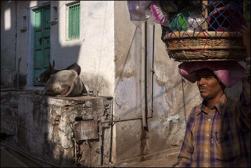 Street. Udaipur. Rajasthan