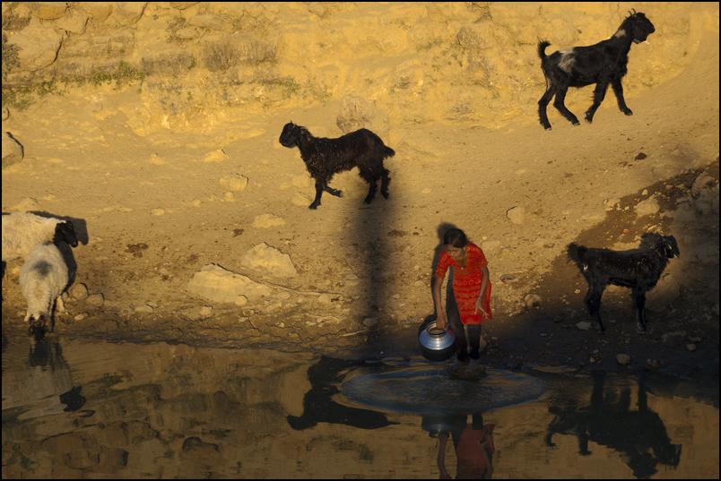 Water. Thar Desert. Rajasthan