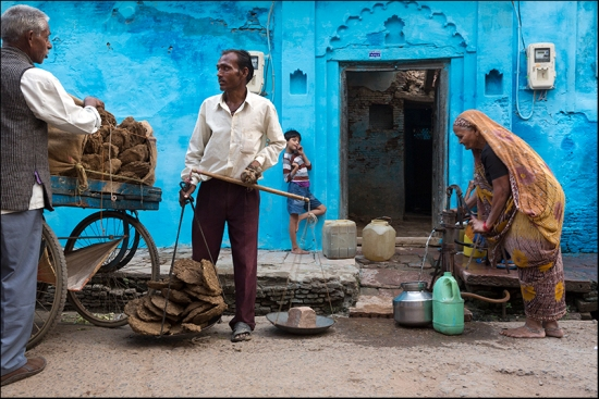 Selling Cowdung cakes. Agra. Uttar Pradesh